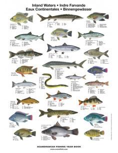 Plakat Indre farvande