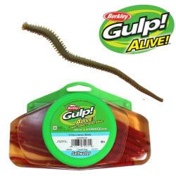 Gulp Alive! Børsteorm Camo fra Berkley